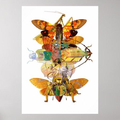 Bug Collage Print