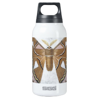 Bug Collection - Moth Insulated Water Bottle
