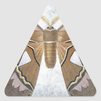 Bug Collection - Moth Triangle Sticker