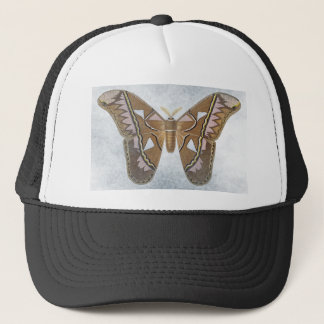 Bug Collection - Moth Trucker Hat