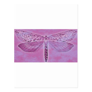 Bug Collection - Purple Dragonfly Postcard