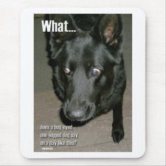 Bug-eyed dog mouse pad