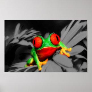 Bug-Eyed Frog Poster