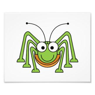 Bug Eyed Grasshopper Cartoon Photo
