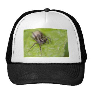 Bug eyed trucker hat