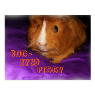 BUG-EYED PIGGY Postcard