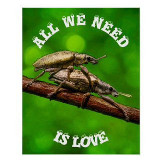 Bug Lovers On The Branch Funny Poster
