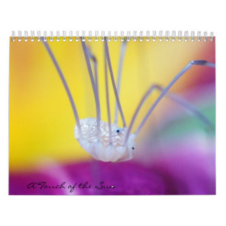 Bug Me! Calendar