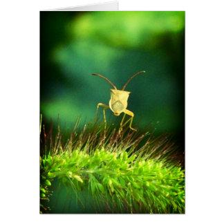 Bug me greeting card