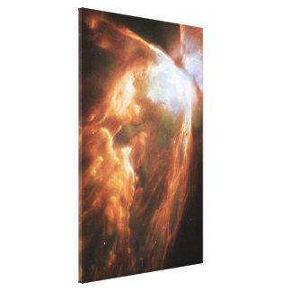 Bug Nebula Canvas Print
