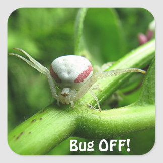 Bug Off! Square Sticker