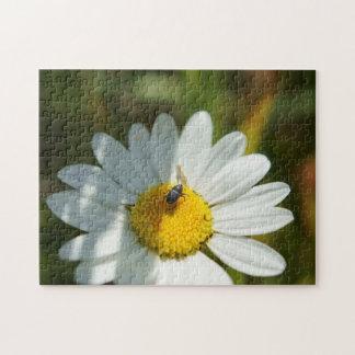 Bug On A Daisy Flower Puzzle