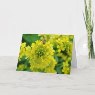 Bug on Flower card