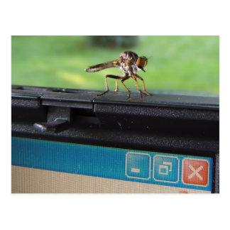 Bug On System postcard
