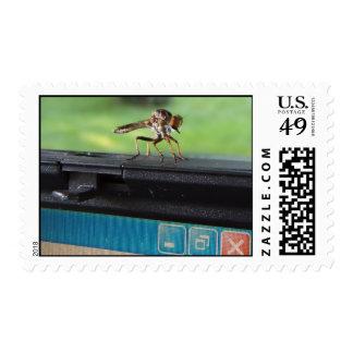 Bug on System ~ stamp