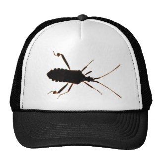 Bug Silhouette ~ hat
