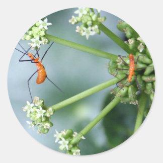 Bug Stretch Classic Round Sticker