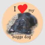 Buggs Dog Stickers-your picture or mine Classic Round Sticker