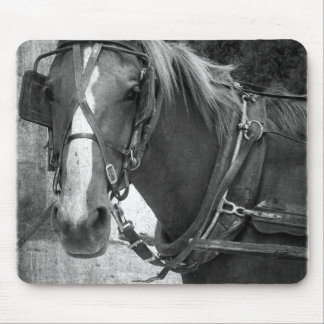 Buggy Horse at the Hitching Post Mouse Pad