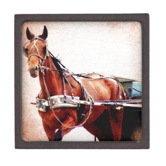 Buggy Horse Premium Jewelry Boxes