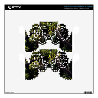 Buggy Rims abandoned in the brush Skin For PS3 Controller