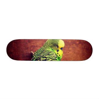 Bugie Skateboard
