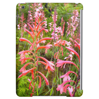 Bugle Lily (Watsonia) Flower, Eastern Cape iPad Air Case