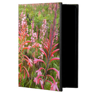 Bugle Lily (Watsonia) Flower, Eastern Cape iPad Air Cover