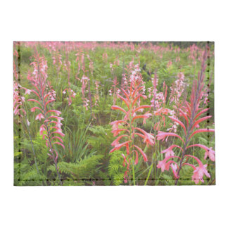 Bugle Lily (Watsonia) Flower, Eastern Cape Tyvek® Card Case Wallet