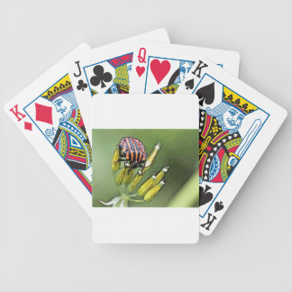 Bugs Bicycle Playing Cards
