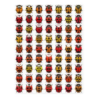 Bugs, Bugs, Bugs - Bugs Pattern Postcard