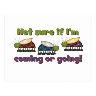 Bugs Coming and Going Tshirts and Gifts Postcard