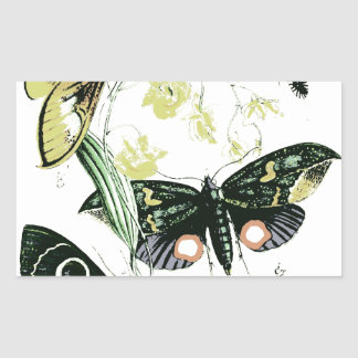Bugs & Flying Insects Photo Design Rectangular Sticker