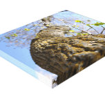 Bug's point of view gallery wrap canvas