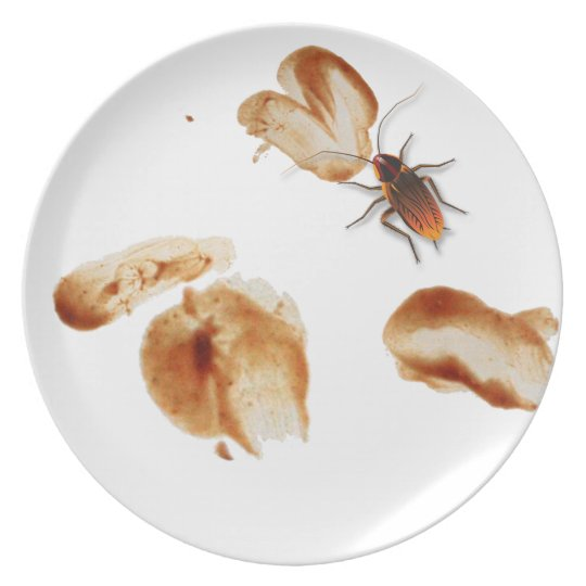 Bugzeez_Icky Sticky Roaches_Dirty Dishes