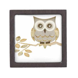 Búho ancho de los ojos en caja de regalo superior  caja de recuerdo de calidad