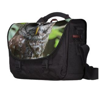 Búho barrado bolsas de portatil