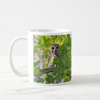 Búho barrado taza