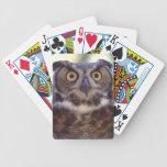 búho cartas de juego