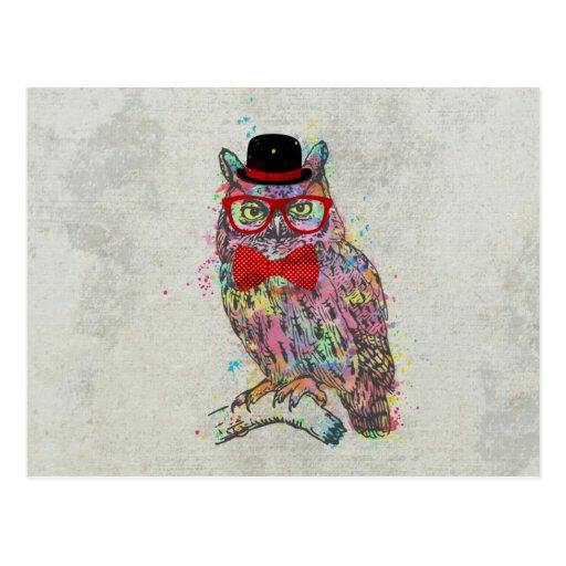 Búho colorido de moda divertido fresco de los wate postales