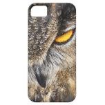 Búho de Eagle del eurasiático (bubón del bubón) iPhone 5 Funda