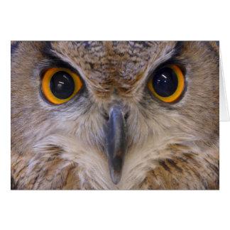 Búho de Eagle del eurasiático Tarjeta De Felicitación