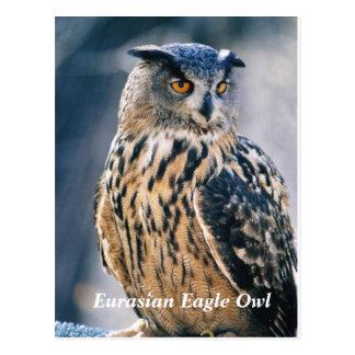 Búho de Eagle del eurasiático Postal
