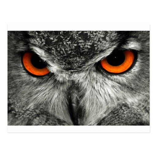 Búho de Eagle del europeo Postal