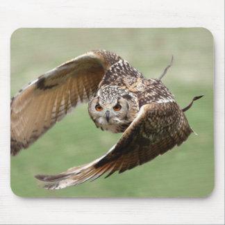 Búho de Eagle en vuelo Tapete De Ratones