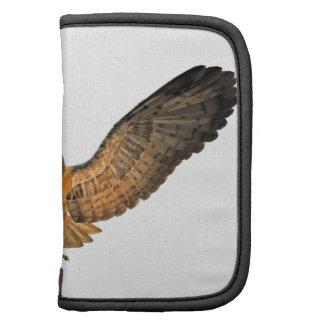 Búho de Eagle Organizador