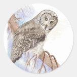 Búho de gran gris, pájaro, naturaleza, fauna, pegatina redonda