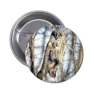 Búho de gran gris - vigilante cremoso de Brown Pin Redondo De 2 Pulgadas