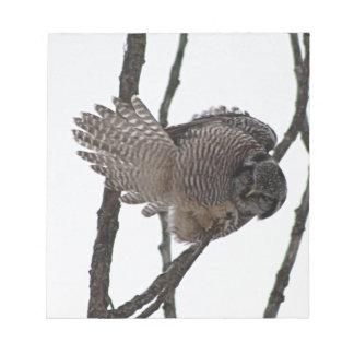 Búho de halcón septentrional 6 libreta para notas