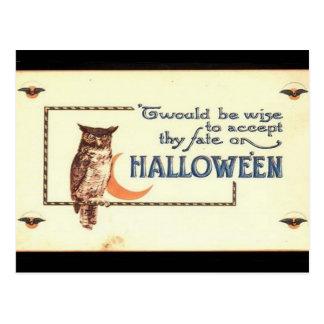 Búho de Halloween del vintage del KRW Tarjeta Postal
